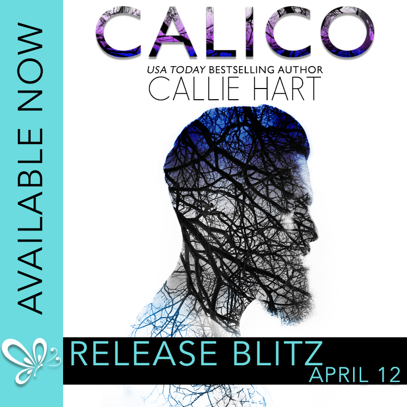 Calico-AN-RB