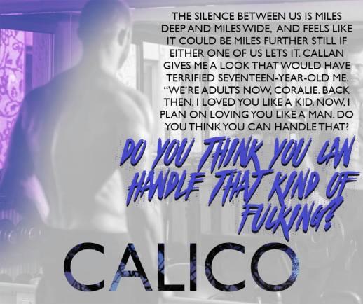 Calico Teaser
