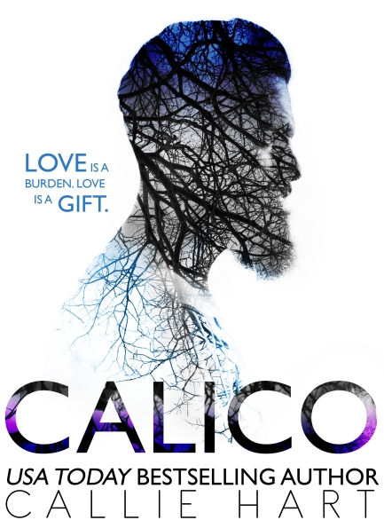 NEW CALICO COVER.jpg