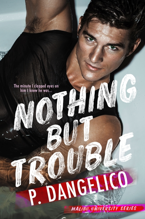 Nothin but Trouble_Final-high copy.jpg