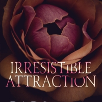 Social Butterfly PR Release Blitz: Irresistible Attraction by Willow Winters