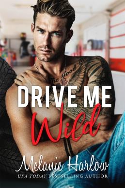 DriveMeWild AMAZON (1)